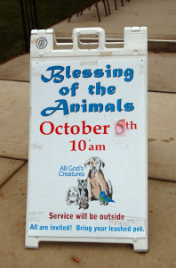 pet_blessing_2013_w